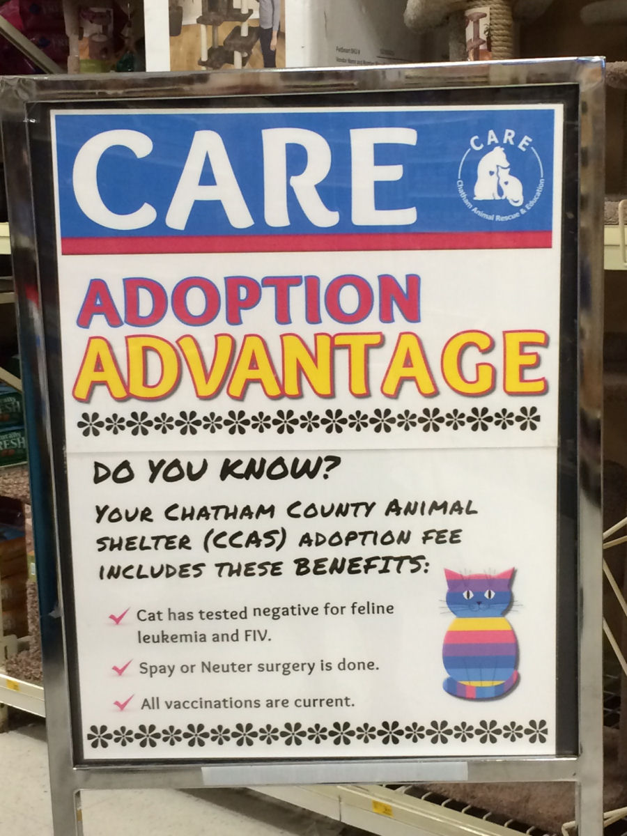 Adoptiona Advantage