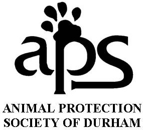 Durham APS Walk for the Animals @ Duke East Campus
