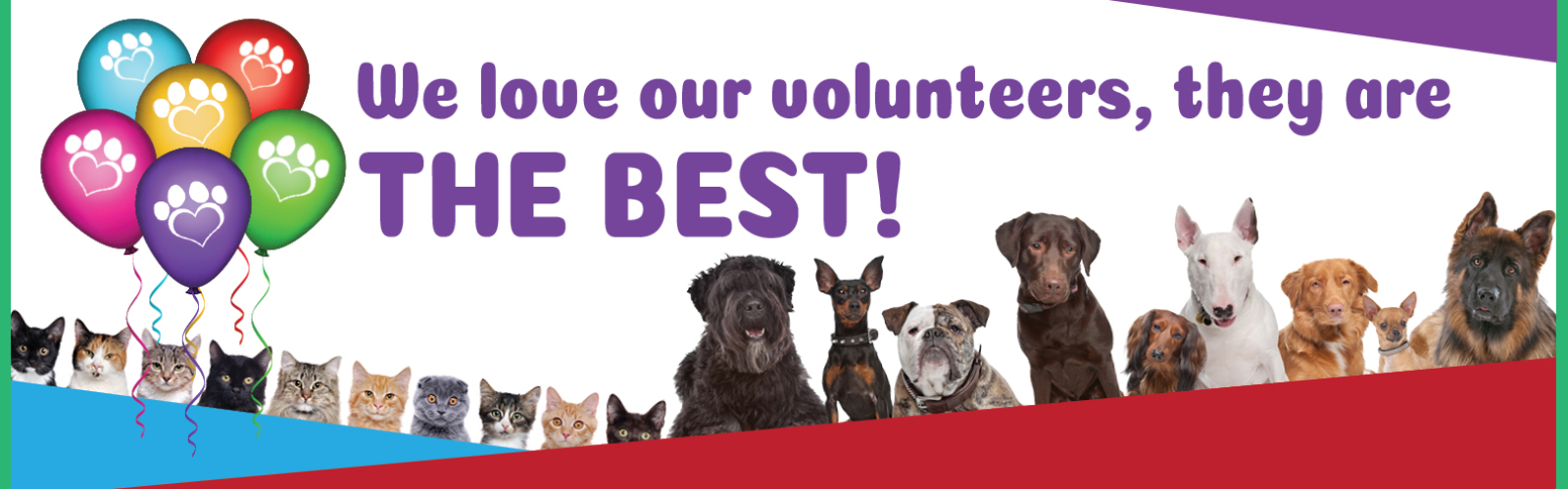 2020 we love volunteers slider