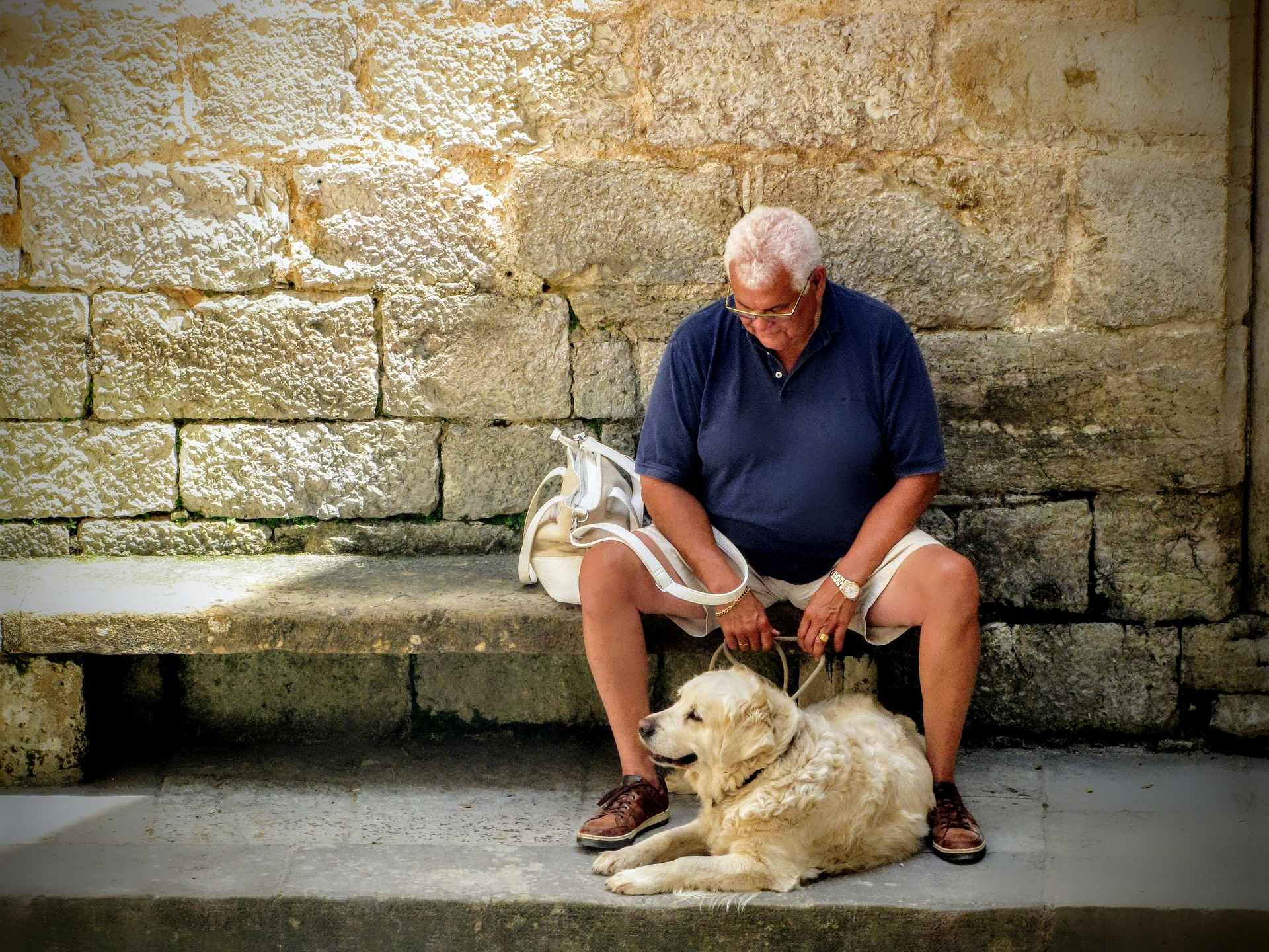PET TIPS: Staying Safe With Our Pets as We Get Older