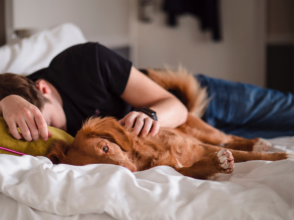 PET TIPS: Our Pets and Our Hearts