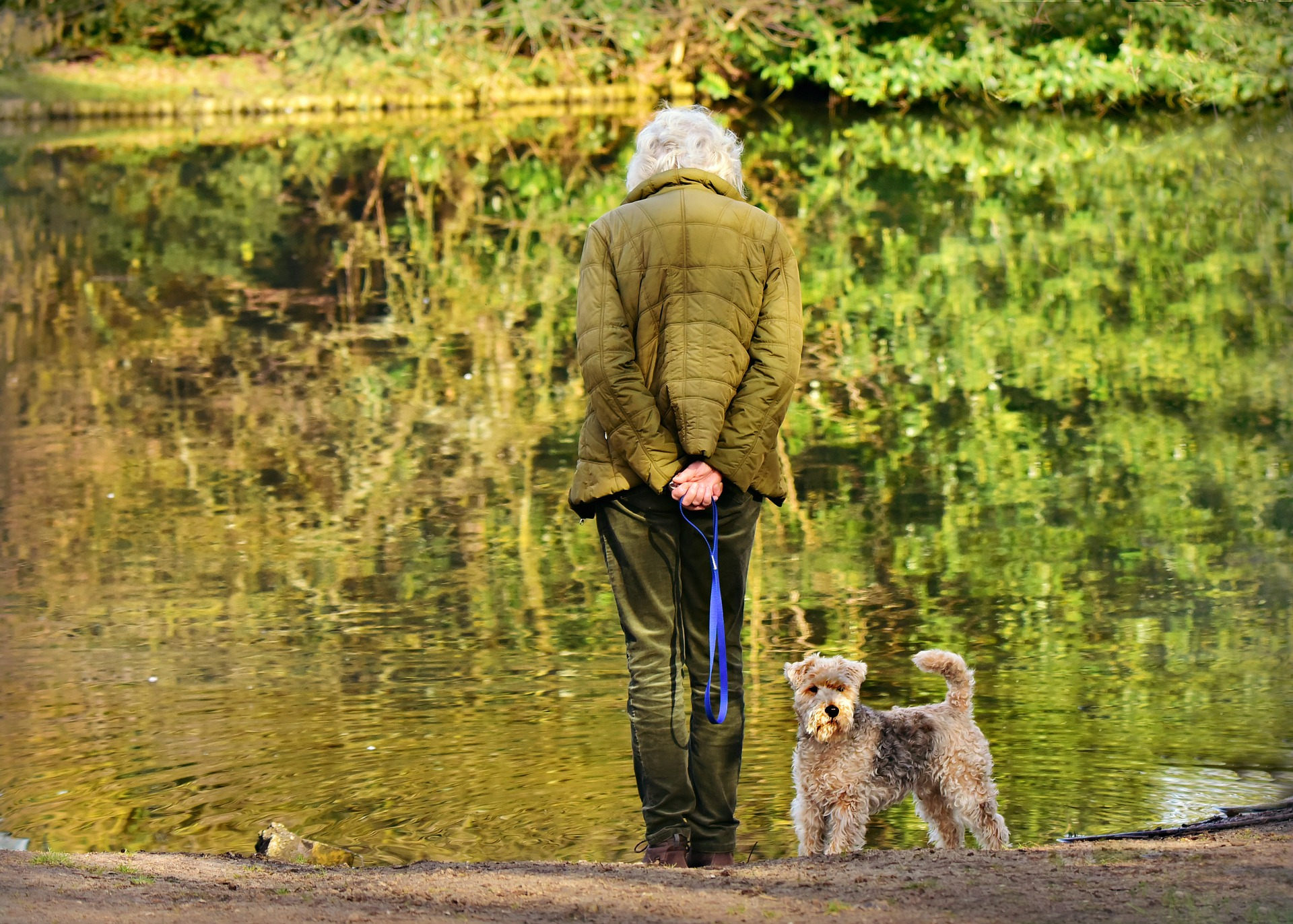 """PET TIPS: """"Paws-Atives"""" of Pets for Seniors"""