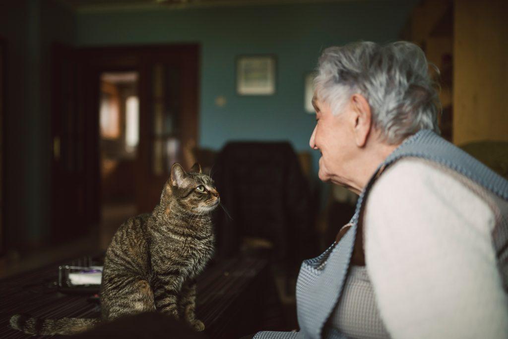 PET TIPS: Choosing a Pet as You Grow Older